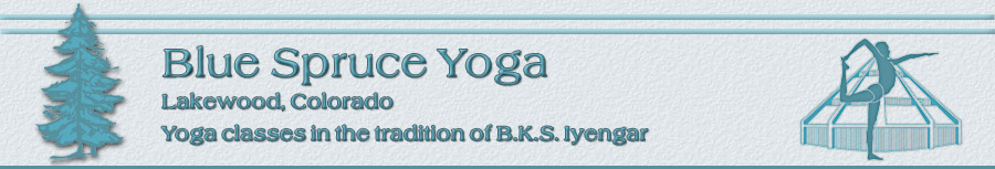 Blue Spruce Yoga, Lakewood, Colorado (Denver metro area), yoga classes in the tradition of B.K.S. Iyengar